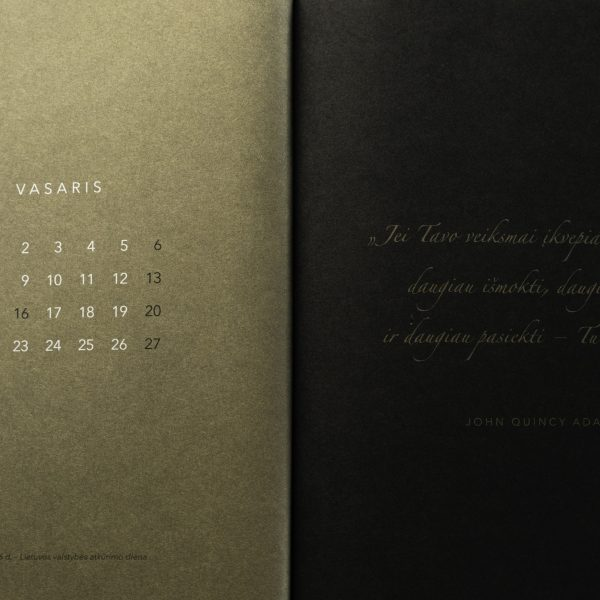 V.G.L. elektroninė darbo knyga (lietuvių kalba)